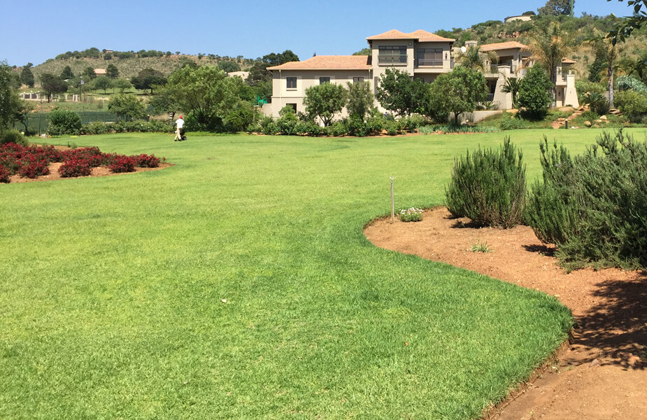 An example of beautiful green lawn, treated by Lawn Master
