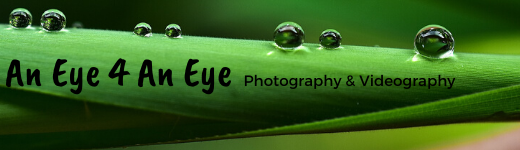 An Eye 4 An Eye Photography and Videography